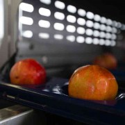 apples-in-machine